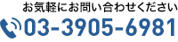03-3905-6981